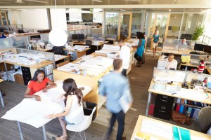 Design your office so it is a productive environment for all employees.