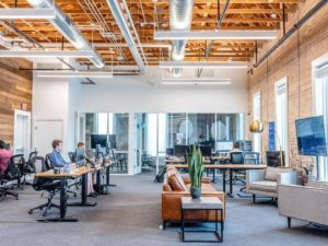 Using Biophilic Office Design at Your Workplace